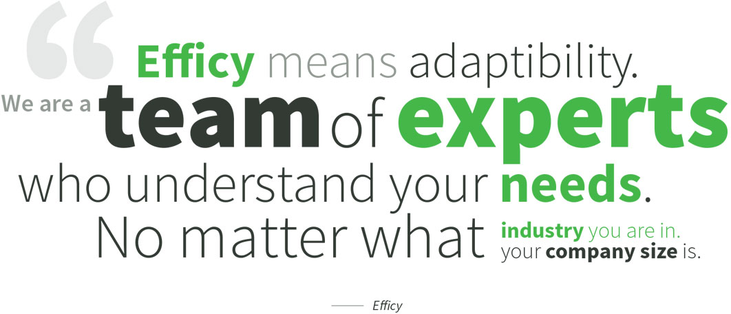 Efficy means adaptibility.